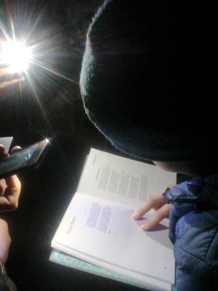 Акция «Библиосумерки – 2017»прошла в библиотеке с. Н.Порубежка