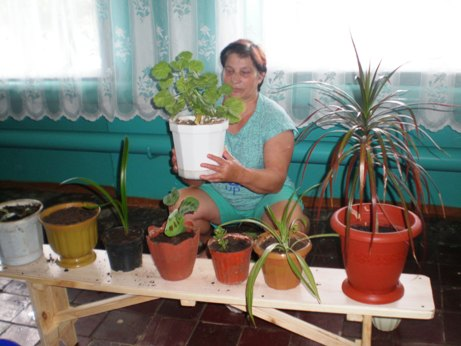 «Хозяюшки» с.Жестянка поделились секретами ухода за домашними растениями